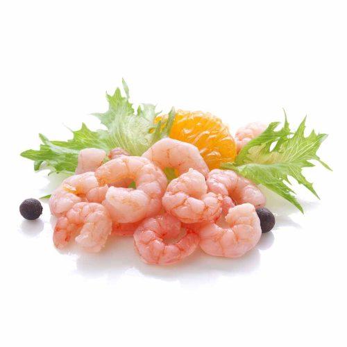 Matane Shrimp